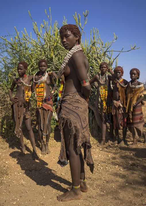 Girls Of The Hamer Tribe, In Traditional Outfit, Turmi, Ethiopia