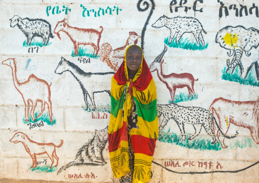 Nyangatom tribe boy wrapped in a multi colored scarf in front of a school mural, Omo valley, Kangate, Ethiopia
