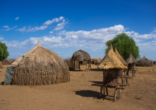 Traditional granaries and huts in nyangatom and toposa tribes village, Omo valley, Kangate, Ethiopia