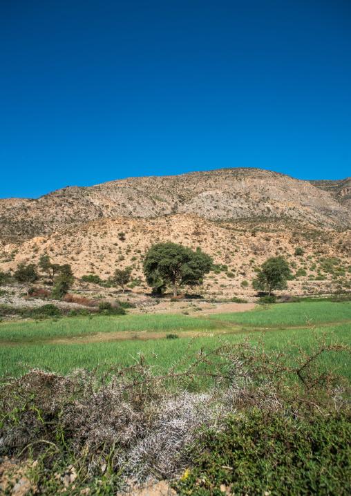 Nice landscape, Dire dawa region, Dire dawa, Ethiopia