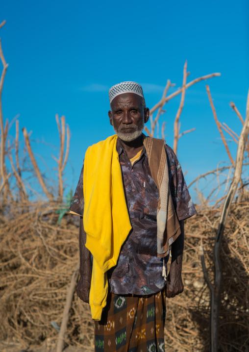 Portrait of an afar tribe elder, Afar region, Afambo, Ethiopia