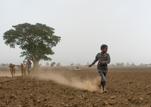 Boy running in a dry field, Kembata, Alaba kuito, Ethiopia