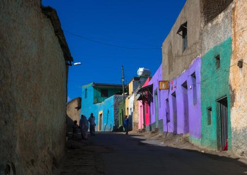 Multicoloured houses in the old town, Harari region, Harar, Ethiopia