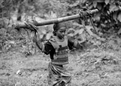 Kaffa girl carrying wood, Mezan teferi area, Ethiopia