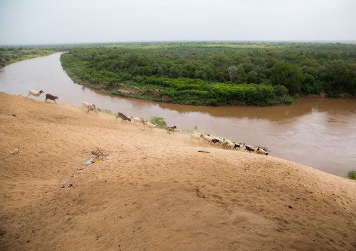 View over Omo river from the top of the bank, Omo valley, Korcho, Ethiopia