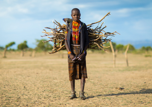 Erbore tribe girl carrying some wood on her back, Omo valley, Murale, Ethiopia