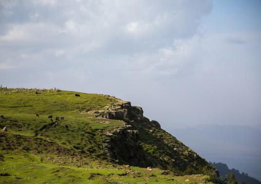 Muslim cemetery on a little hill, Gurage Zone, Butajira, Ethiopia