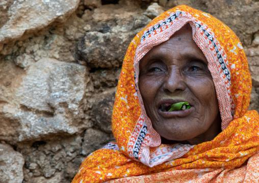 Old harari woman chewing khat during a sufi ceremony, Harari Region, Harar, Ethiopia