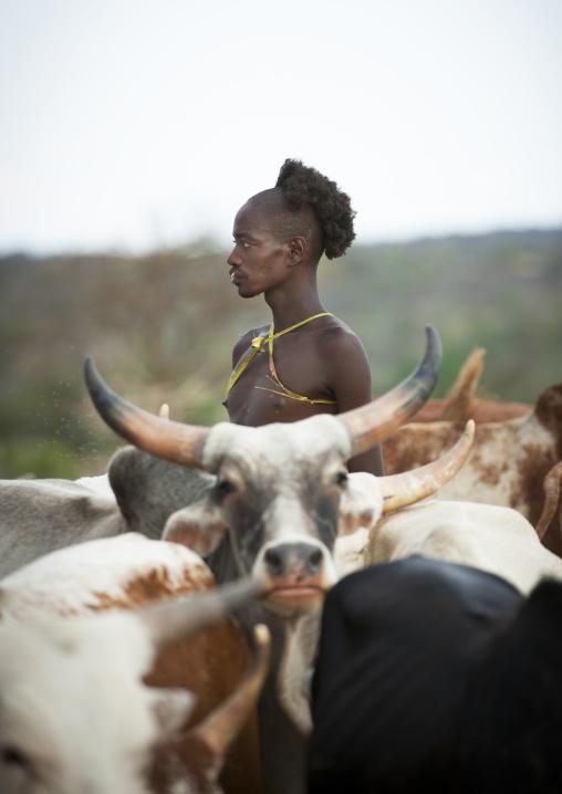 Hamer Jumper During Bull Jumping Ceremony, Turmi, Omo Valley, Ethiopia