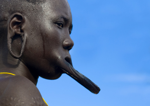 Portrait Of A Mursi Tribe Woman With Lip Plate, Scarifications And Enlarged Ears In Mago National Park, Omo Valley, Ethiopia