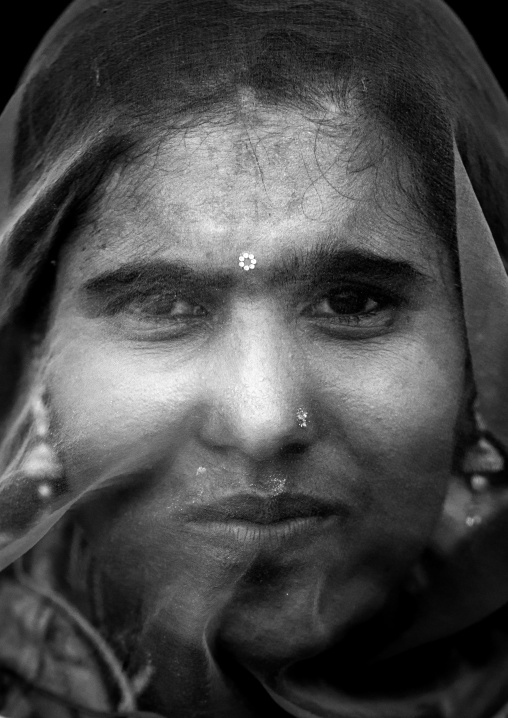 Portrait of a rajasthani woman hidding her face under a sari, Rajasthan, Jaisalmer, India