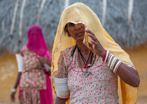 Portrait of rajasthani women with saris, Rajasthan, Jaisalmer, India