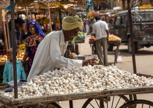 Old indian man selling garlic in a market, Rajasthan, Jaisalmer, India
