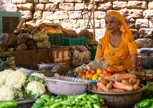 Indian woman selling vegetables in a market, Rajasthan, Jaisalmer, India