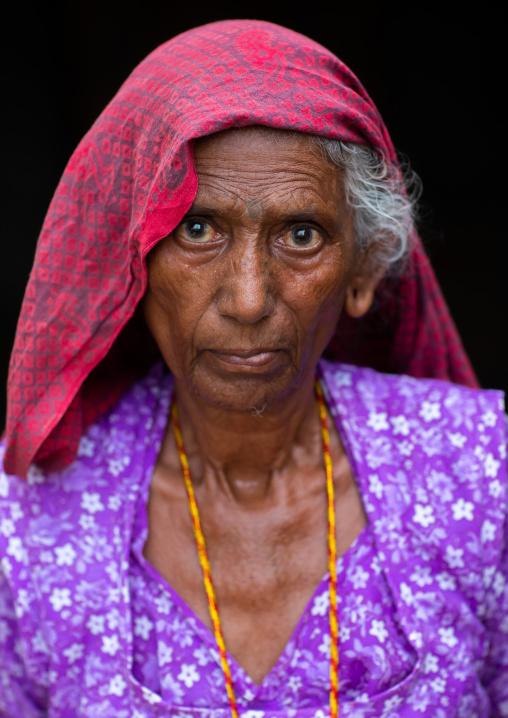 Portrait of a senior rajasthani woman in traditional sari, Rajasthan, Jaisalmer, India