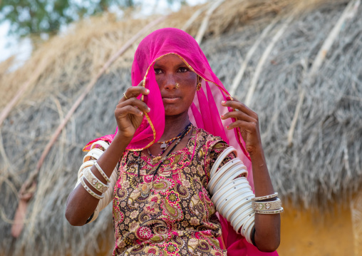 Portrait of a rajasthani woman in traditional clothing, Rajasthan, Jaisalmer, India