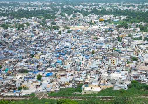 The blue city seen from Chittorgarh fort, Rajasthan, Chittorgarh, India