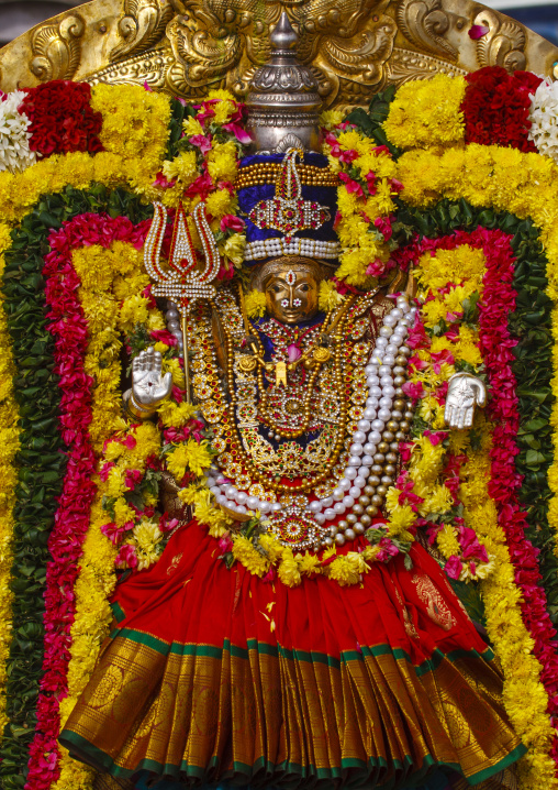 Golden Statue Of Lord Shiva On A Throne Adorned With Flowers For Masi Magam Festival In Pondicherry, India