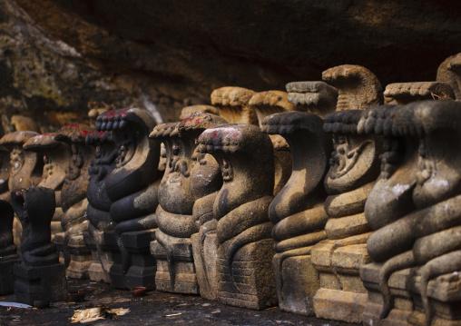 Row Of Stone Cobras In Tirumayam Fort, Tirumayam, India