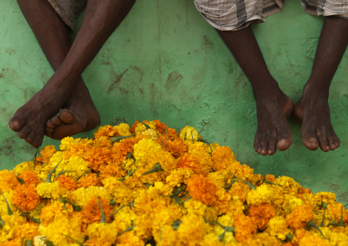 Feet Of Waiters Sitting On A Wall Above Bunches Of Flowers At The Flower Market, Madurai, India