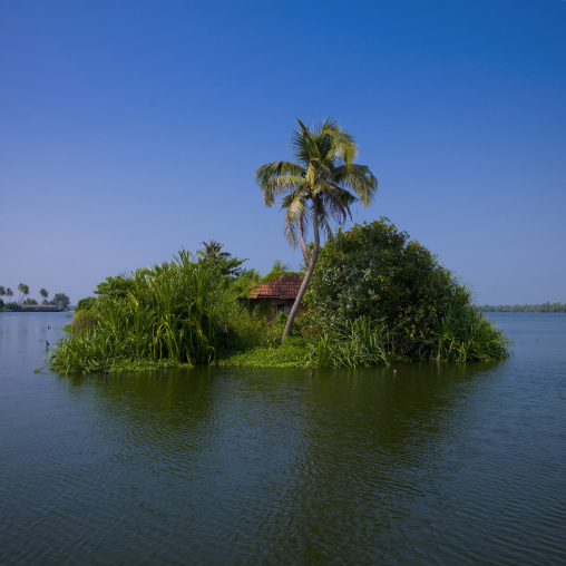 Little House Covered With Flora On A Island In Backwaters Of Kerala, Alleppey, India