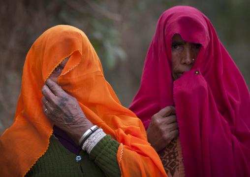 Rajasthan Women, Maha Kumbh Mela, Allahabad, India