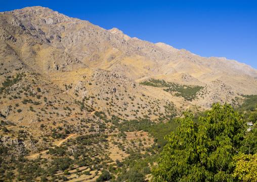 Howraman Mountains, Iran