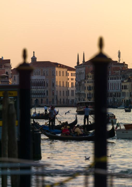 Gondolas on the grand canal, Veneto Region, Venice, Italy