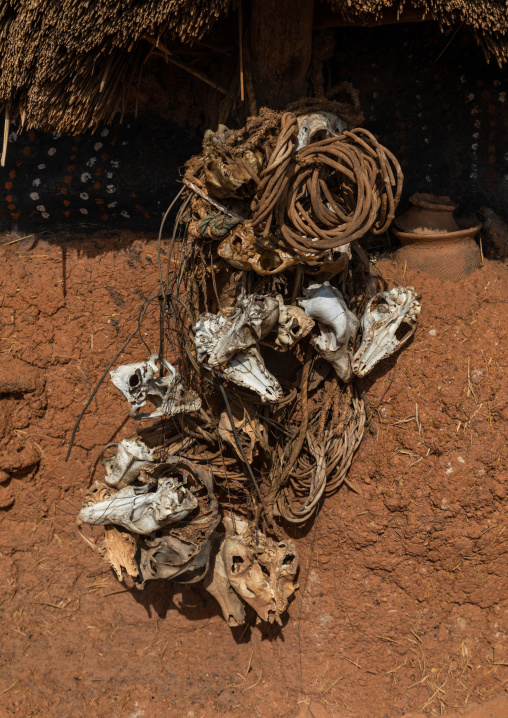Animals skulls on a Senufo fetish house, Savanes district, Niofoin, Ivory Coast