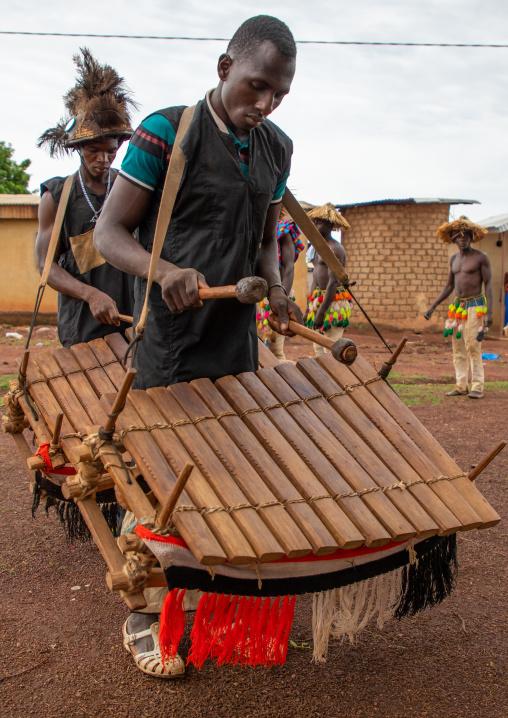 Senufo tribe musicians playing balafons during the Ngoro dance, Savanes district, Ndara, Ivory Coast