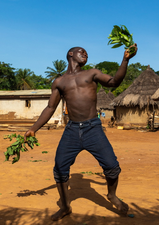 Dan tribe man dancing with leaves during a ceremony, Bafing, Gboni, Ivory Coast