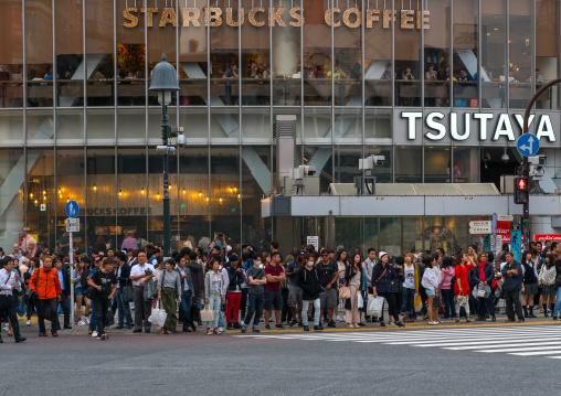 Shibiuya crossing crowded with pedestrians, Kanto region, Tokyo, Japan