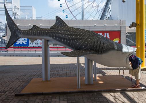 Woman looking inside a fake giant plastic whale shark in Kaiyukan aquarium, Kansai region, Osaka, Japan