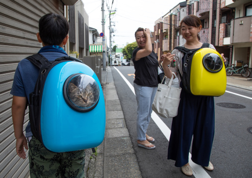 Japanese people carrying their cats in backpacks, Kanto region, Tokyo, Japan
