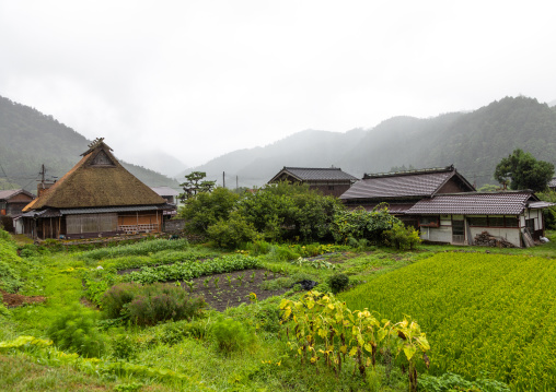 Thatched roofed houses in a traditional village, Kyoto Prefecture, Miyama, Japan