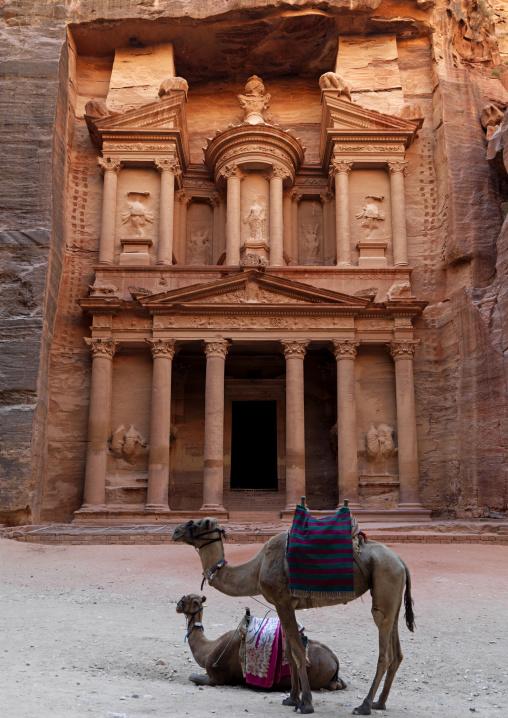 Camels In Front Of Al Khazneh Treasury Ruins, Petra, Jordan