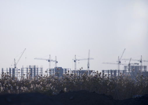 Buildings And Cranes In The Steppe, Astana, Kazakhstan