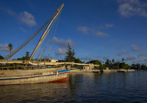 Fishing dhows moored along coastline, Lamu county, Matondoni, Kenya