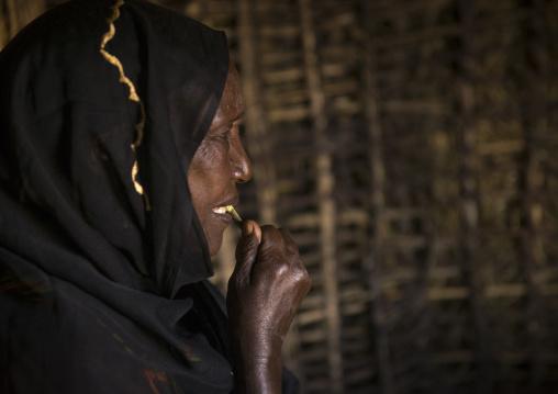 Borana tribe woman with a toothbrush inside a hut, Marsabit district, Marsabit, Kenya