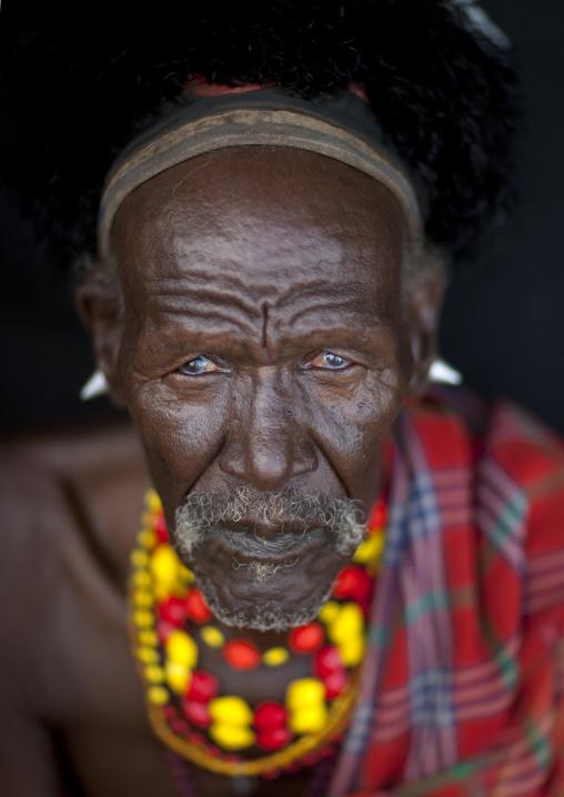 Portrait of a Turkana tribe man with ostrich feathers on the headwear, Rift Valley Province, Turkana lake, Kenya