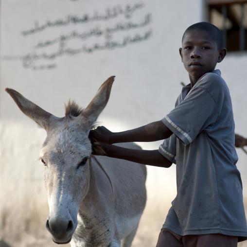 Young boy with his donkey, Lamu County, Lamu, Kenya