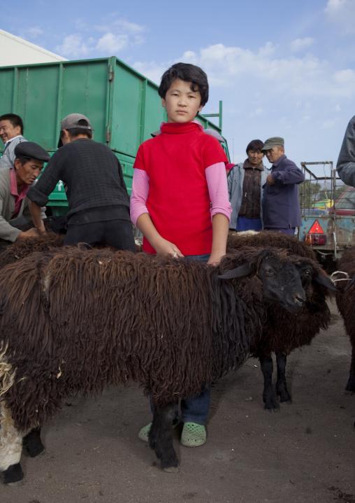 Girl Keeping Sheep At The Animal Market Of Kochkor, Kyrgyzstan
