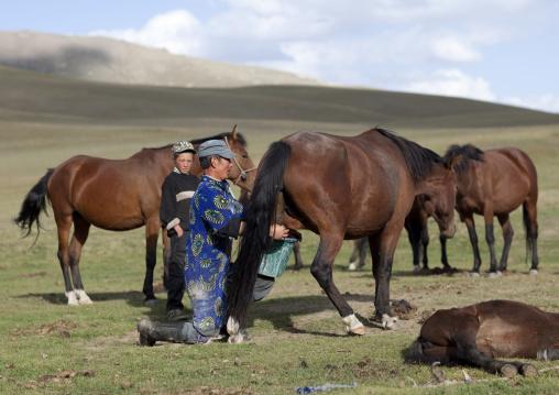 Father Showing His Son How To Take Care Of Horses, Jaman Echki Jailoo Village, Song Kol  Lake Area, Kyrgyzstan
