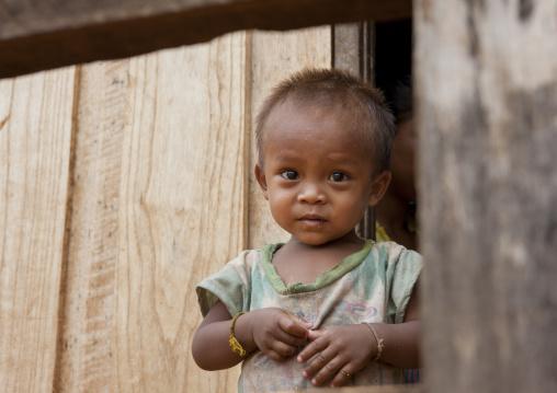 Alak kid, Boloven, Laos