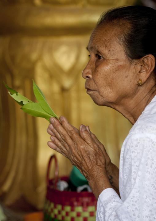 Woman praying in a temple, Muang sing, Laos