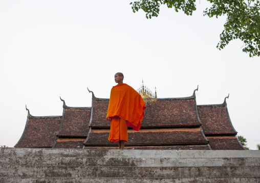 Monk in temple vat xieng thong, Luang prabang, Laos