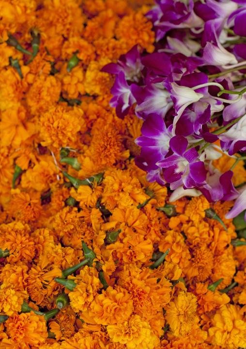 Wreaths of flowers in temple, Vientiane, Laos