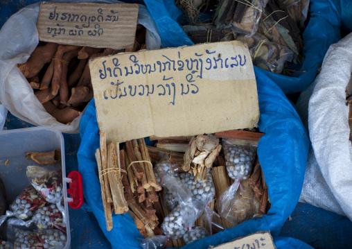 Traditional medicine, Thakhek, Laos