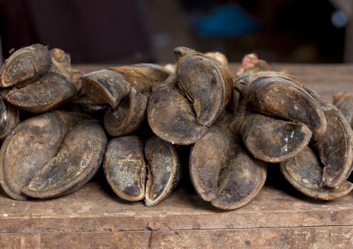 Buffalos feet, Thakhek, Laos