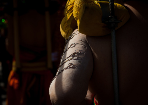 Hindu Devotee In Annual Thaipusam Religious Festival In Batu Caves With His Arm Pierced With Hooks, Southeast Asia, Kuala Lumpur, Malaysia